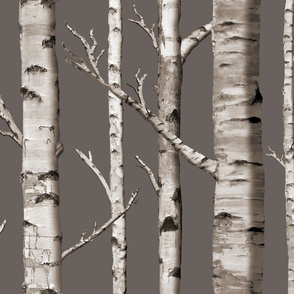 Birch Grove in Cashmere