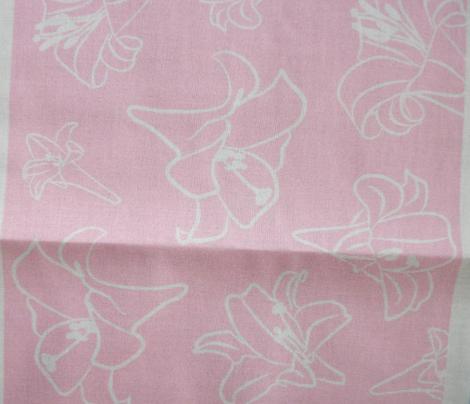 Pinkish Lillywhite