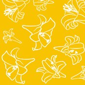Rrlillies_yellow_white_shop_thumb