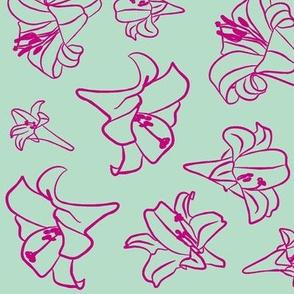 Velveteen Lillies