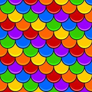 Rainbow Scallop - Scales