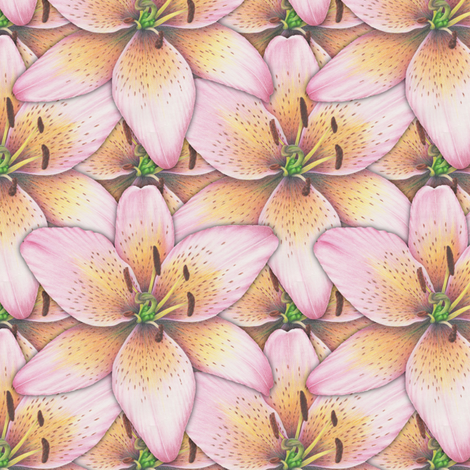 Pink Lily fabric by jjtrends on Spoonflower - custom fabric