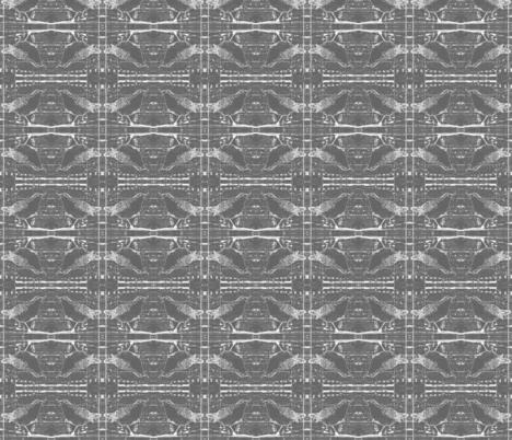 X-ray Birds Deep Grey fabric by peaceofpi on Spoonflower - custom fabric