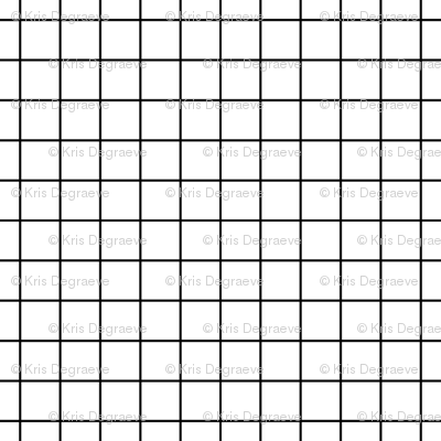Black On White Medium Grid