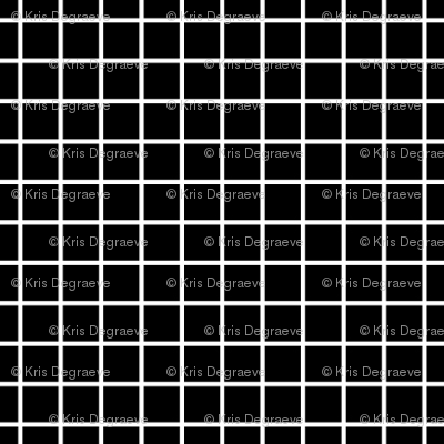 White On Black Small Grid