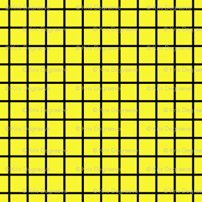 Black On Yellow Small Grid