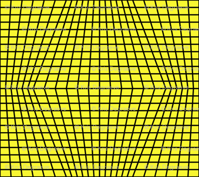 Black On Yellow Warped Grid