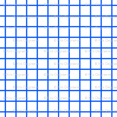 Blue On White Small Grid
