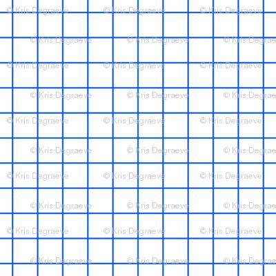 Blue On White Medium Grid