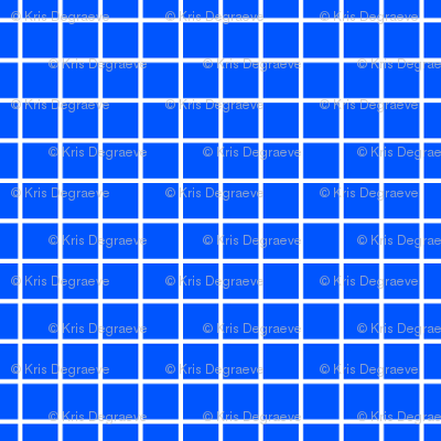 White On Blue Small Grid