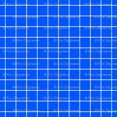 White On Blue Medium Grid