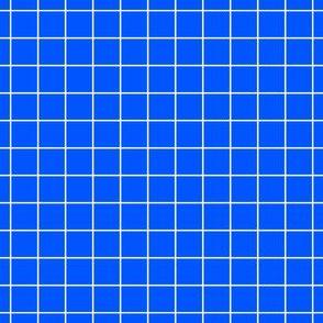 White On Blue Medium Grid