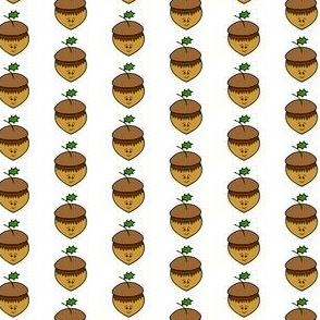 cute acorn