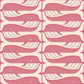 whale pod glide