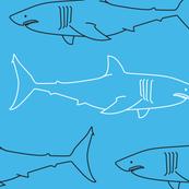 Sharks! Sea of Blue - Large