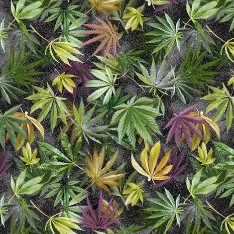 Midnight Cannabis Leaves fabric by camomoto on Spoonflower - custom fabric