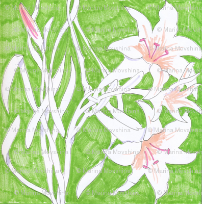 Lily Entwined