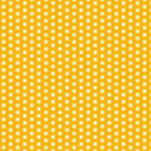 12 stars white