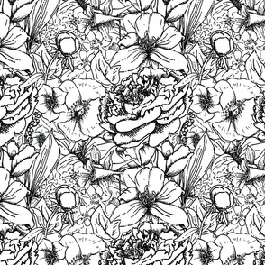 Of Peonies & Poppies - Coloring Book Edition