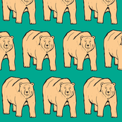 Bears in Teal