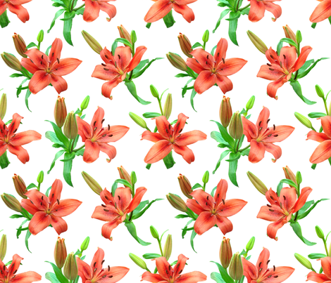 Lily (white) fabric by analinea on Spoonflower - custom fabric