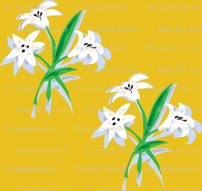 Clusters of Lilies