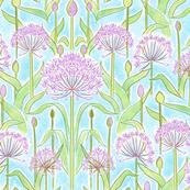 Allium Garden Blue