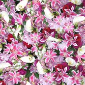 Rlilly_bouquet_shop_thumb