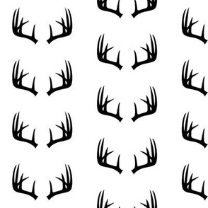 B&W Antlers // small scale