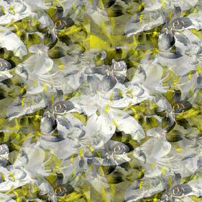 yellow_lillies