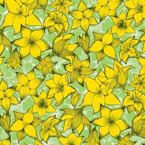 lilies_lemonpistachio