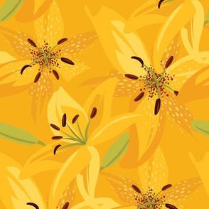 Sunshine Day Lilies