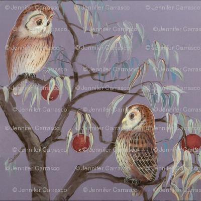 Owls and Pomeganates