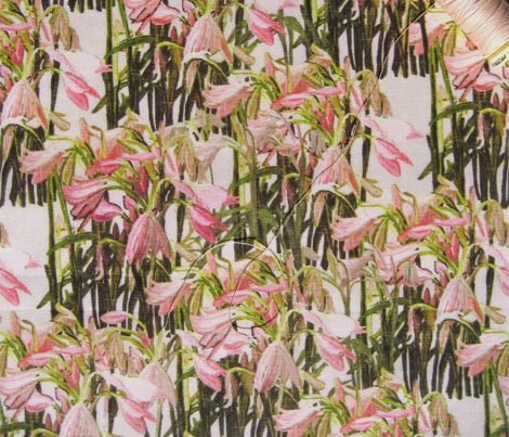 Sparse Easter lilies on pink canvas by Su_G_©SuSchaefer