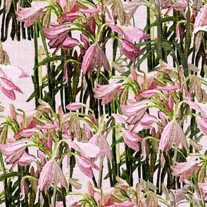 Sparse Easter lilies on pink canvas by Su_G