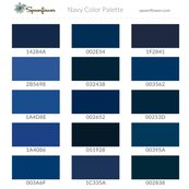 Sf-colorswatch-cs-navy-2016_shop_thumb