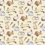 Rrrabbits_shop_thumb