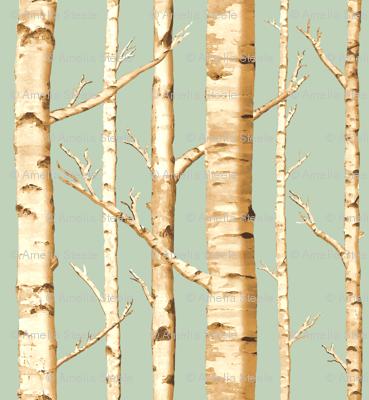 Birch Grove in Sunshine