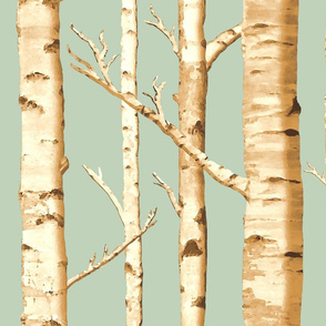 Birch Grove in Sunshine