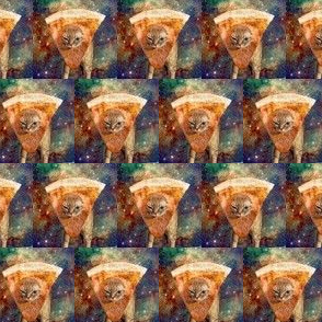 cat_in_space