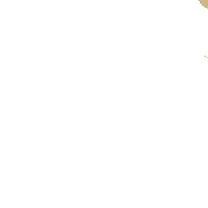 Symbol_Lilly
