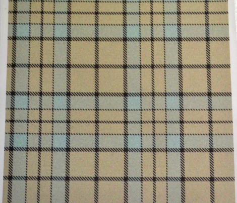 Daystar Plaid