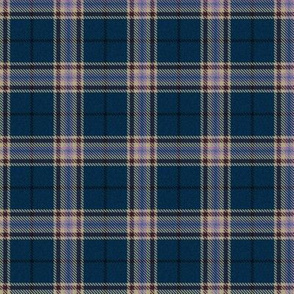 Starry Moonlight Plaid
