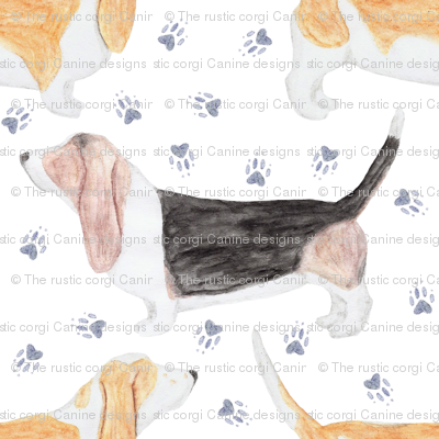Watercolor Basset hounds and pawprints