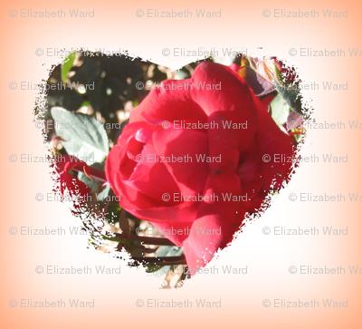 fuzzy_rosy_heart-ed