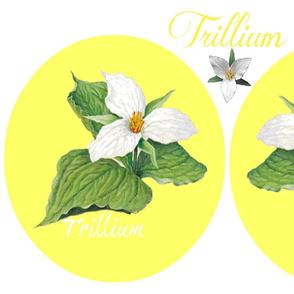 TRILLIUM ROUND PILLOWS