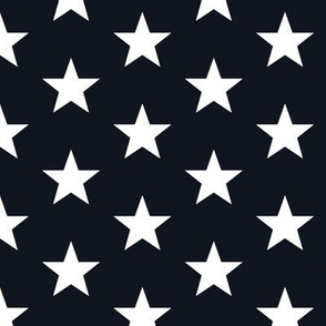 Superstars White on Black-Medium