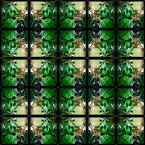 magnolia tile
