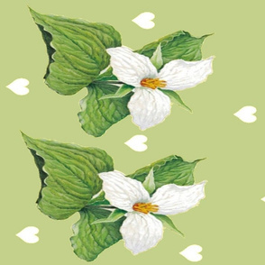SPRING GREEN TRILLIUM TEA TOWELS