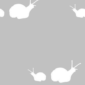 Woodland Snail Grey